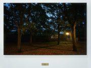 Rumiko Hagiwara, X, 2011, 105x68cm photo, inkjet print